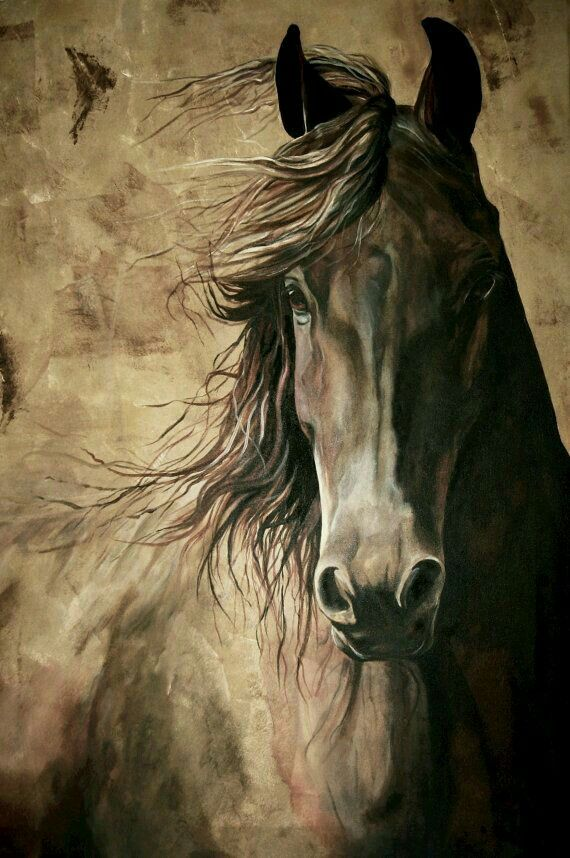 Cavalo ❤