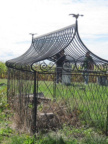 1000 images about the caged graves on pinterest back 2 school glow and ontario. Black Bedroom Furniture Sets. Home Design Ideas