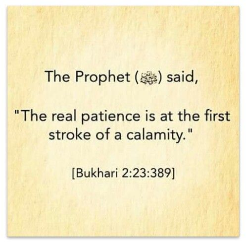 "الَّذِينَ إِذَا أَصَابَتْهُمْ مُصِيبَةٌ قَالُوا إِنَّا لِلَّهِ وَإِنَّا إِلَيْهِ رَاجِعُونَ   Who, when disaster strikes them, say, ""Indeed we belong to Allah, and indeed to Him we will return.""   Holy Qur'an: Al-Baqara (2:156)"