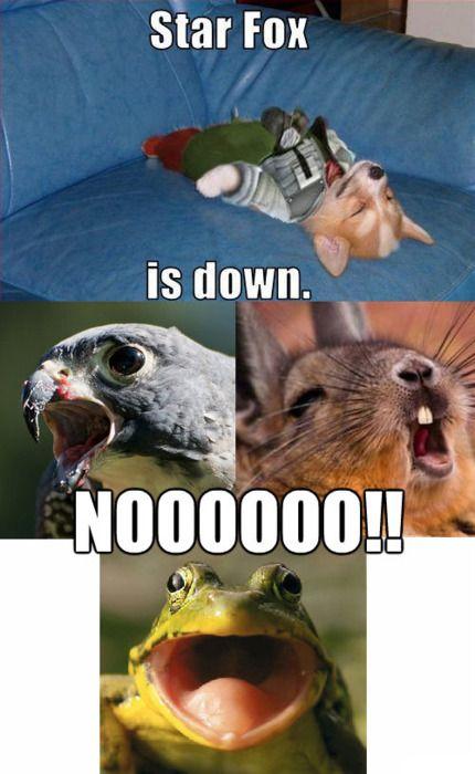 Se llama Fox, pero el meme es bueno así que se merece estar en mi tablero de Nintendo.