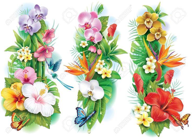 Arrangement De Fleurs Tropicales Et De Feuilles Clip Art Libres De Droits , Vecteurs Et Illustration. Pic 21670791.