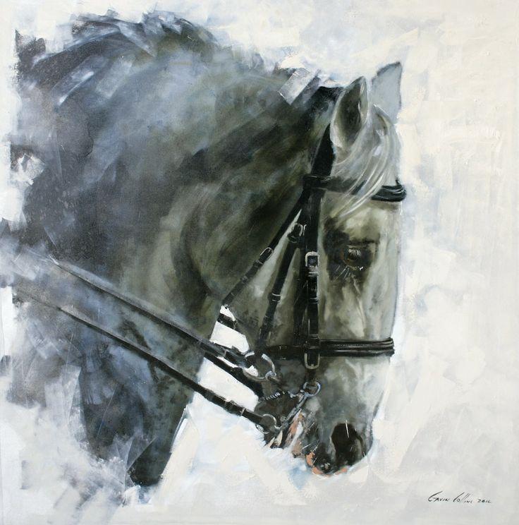 """Gavin Collins """"lipizzaner stallion"""""""