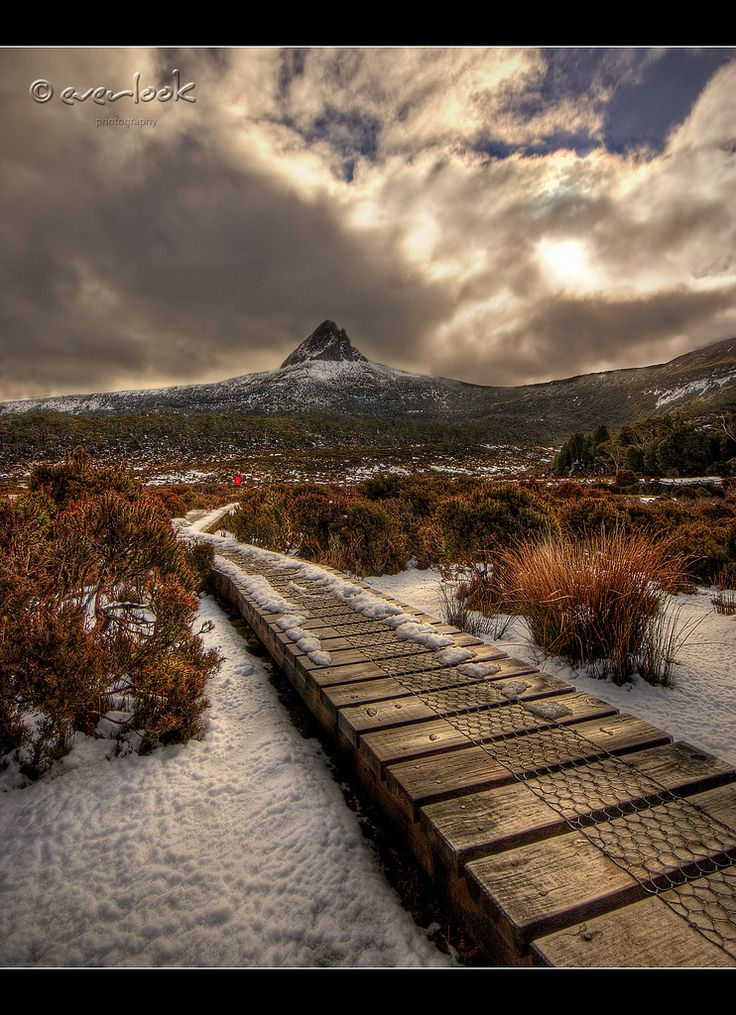 Path to solitude - Cradle Mountain-Lake St Clair National Park in the Central Highlands of Tasmania, Australia