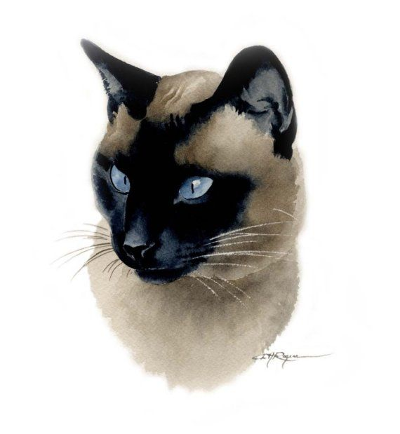 SIAMESE CAT Watercolor Painting Art Print Signed by k9artgallery, $12.50