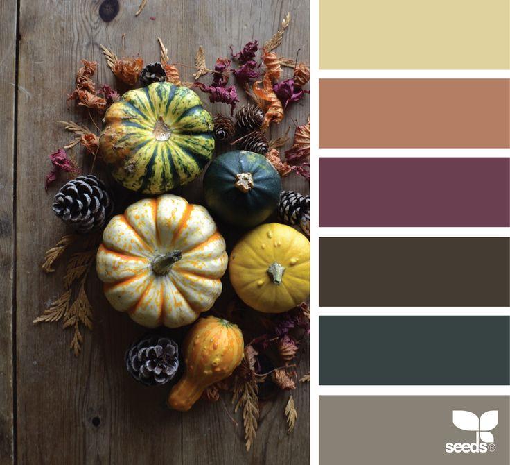 1436 besten farbpaletten bilder auf pinterest farbpaletten farbschemata und farbdiagramm. Black Bedroom Furniture Sets. Home Design Ideas