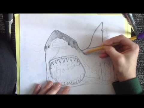 Dit is deel 2 van het filmpje waarin ik de haai keer tekenen. In dit filmpje worden de details getekend en word de haai gearceerd.