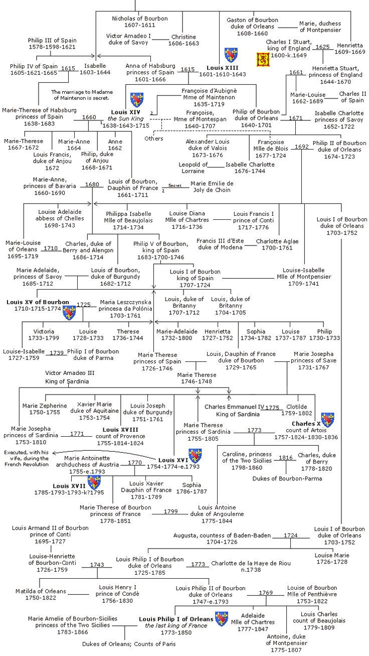 best ideas about family tree websites family 17 best ideas about family tree websites family tree book genealogy websites and family tree search