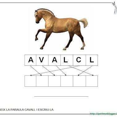 CAVALL projecte