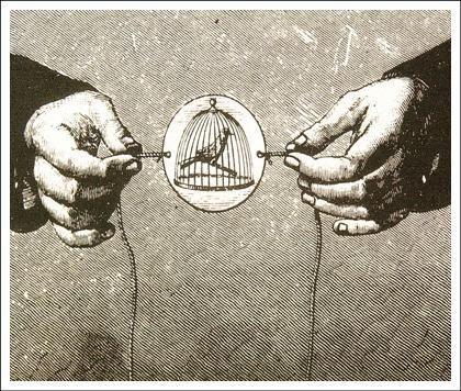 Taumatropo // Inventado por Willian Fitton em 1825