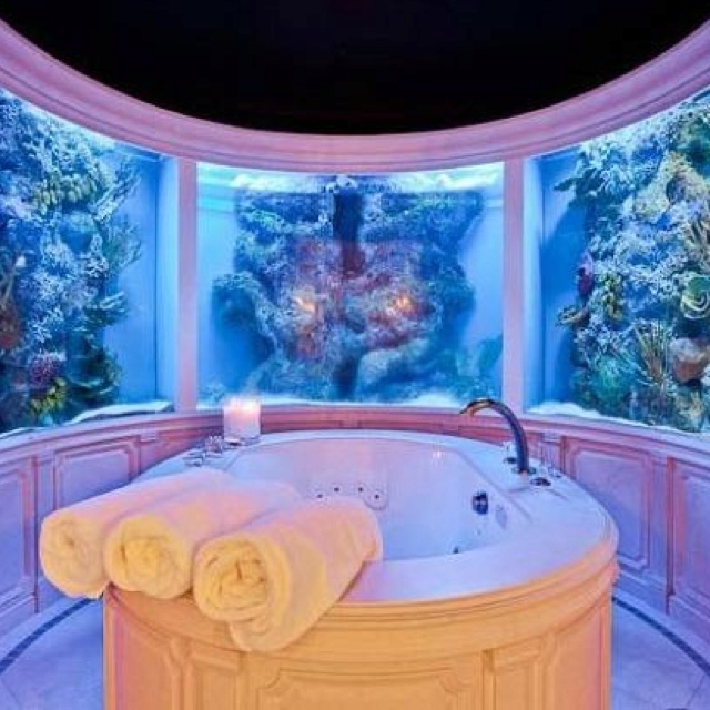 1000 Images About Beautiful Aquariums Fish Tanks On