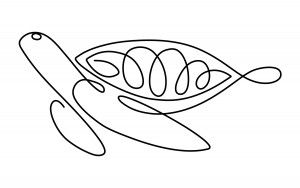 Kristen Selak » Continuous Line Drawing