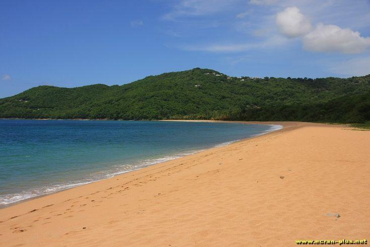La plage de Grande Anse - Deshaies - Guadeloupe