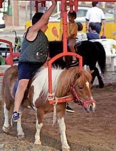 Spagna: la giostra dei pony. Vivi [VIDEO]   All-4Animals