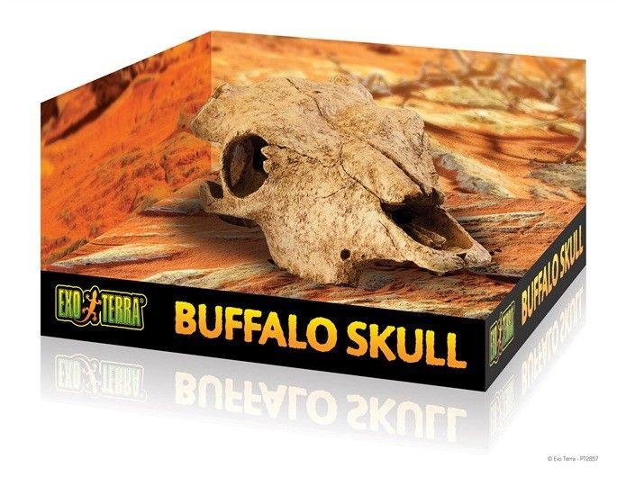 Refugio Bufalo Skull EXOTERRA Los refugios Exo Terra Skull son muy realistas y agregan un toque excitante a cualquier tipo de terrario, desierto, selva o terrario acuático.