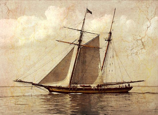 Baltimore Clipper by Timothy Gass.