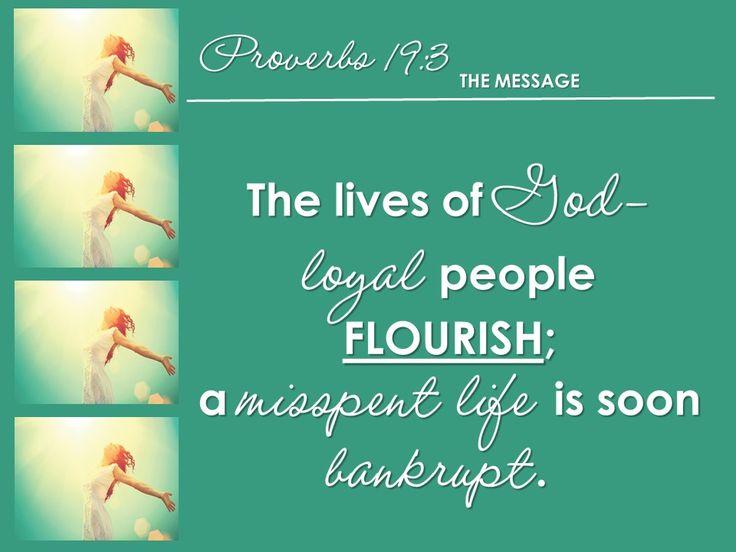 Flourishing Life 4 Proverbs 19:3