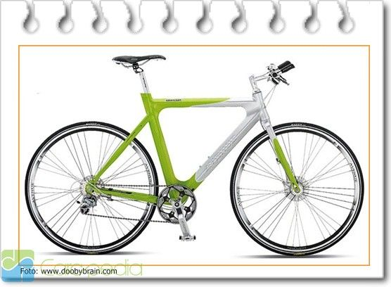Toko Sepeda Online - Olahraga - CARApedia