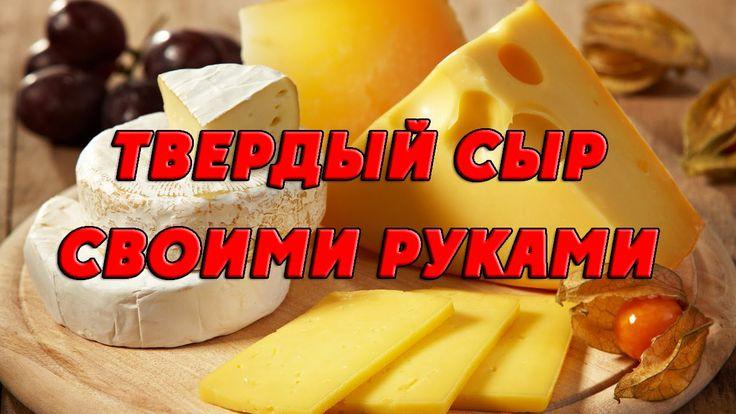 Твердый сыр своими руками. Изготовление твердого сыра в домашних условиях