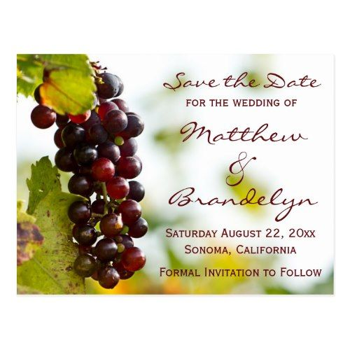 Winery Wedding Save the Date Vineyard Winery Grapes Save the Date Postcards