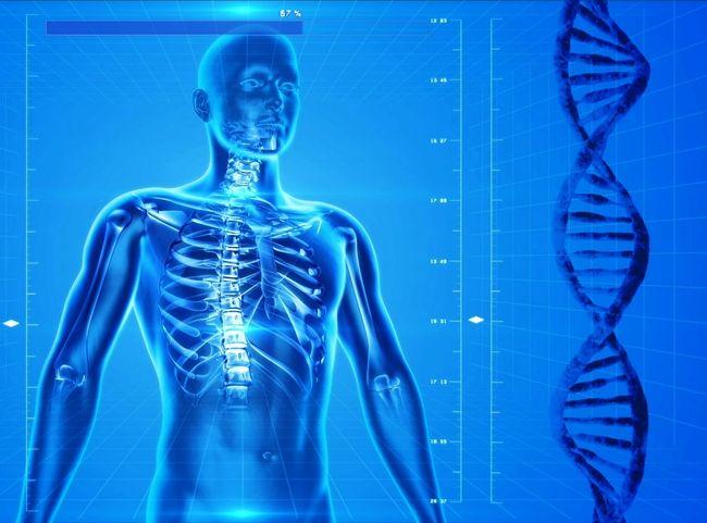 Csökkenti a csont- és ízületi gyulladás kialakulásának esélyét a fogyás - HáziPatika