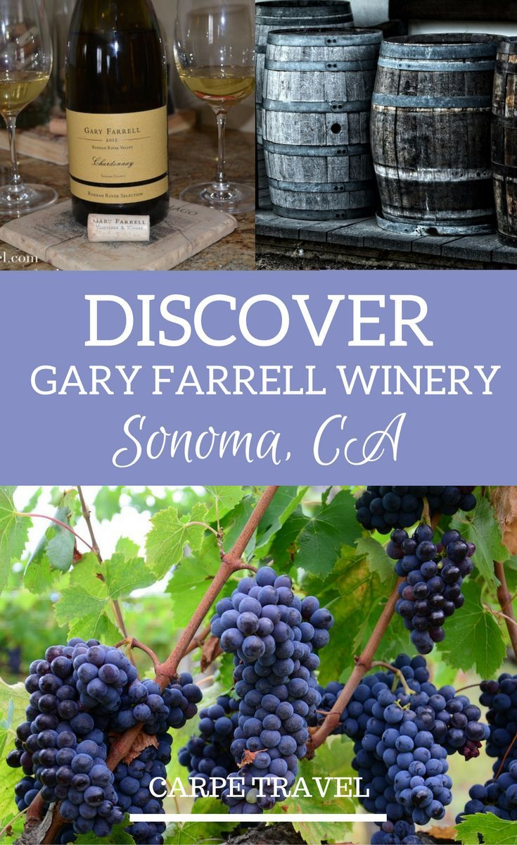 Why you should visit Gary Farrell Winery in Russian River Valley, Sonoma, California + an interview to winemaker Theresa Heredia | Sonoma wineries | Sonoma wine tasting | Sonoma wine map | Sonoma vineyard | Russian River wineries #russianrivervalley #sonoma #sonomawine #Wine via @elainschoch