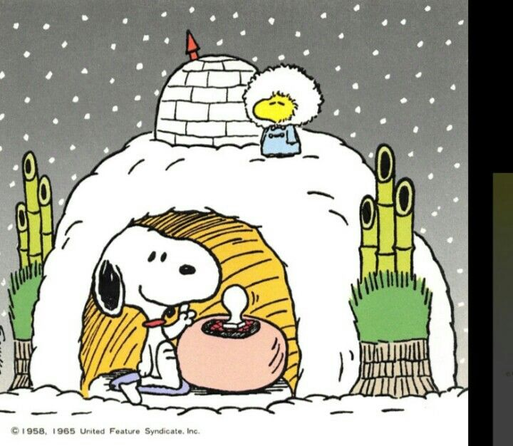 Snoopy and Woodstock With Condo-Style Igloos