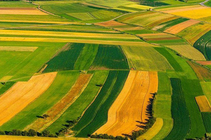 Receita Federal normatiza as novas regras para atualização do Cafir e informa os procedimentos de vinculação de imóveis rurais no CNIR.