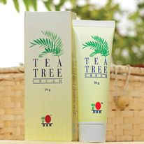 Tea Tree Cream is a soothing skin cream prepared by using pure tea tree oil. The oil is highly lipophilic (attracted to fats, solvent) and it is rapidly absorbed through intact skin. Tea Tree Cream is suitable for skin hygiene and protection. Application of cream is safe for whole family. http://usagano.dxnnet.com/products