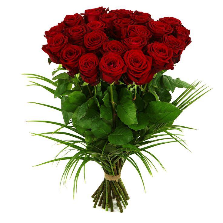 Volle bos verse rode rozen maar liefst 25 stuks of meer... kies zelf het aantal. Thuiswinkel Lid. Vers garantie. Snel bezorgd. BoeketCadeau.nl