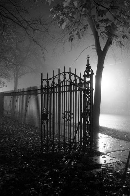 ☾ Midnight Dreams ☽  dreamy  dramatic black and white photography - night gate