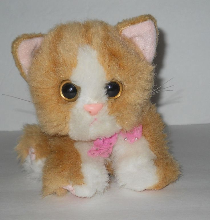 List Of Synonyms And Antonyms Of The Word Kitty Soft Stuffed Cat