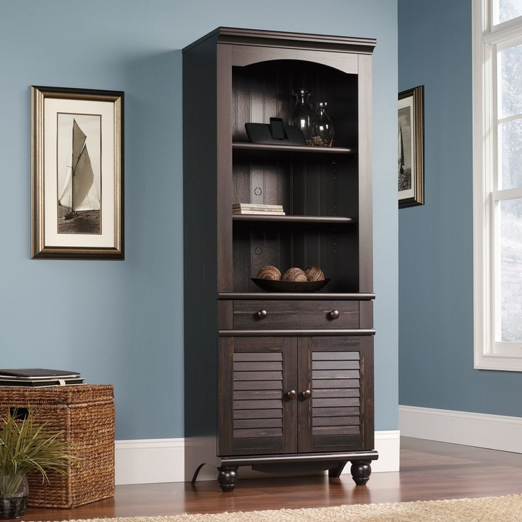 New Library Cabinet with Doors