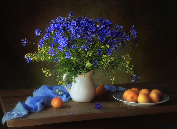 Still life with cornflowers and apricots - null