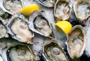 Oysters from Lindisfarne have graced the tables of some of the best restaurants in the country. Sophie Anderson reports