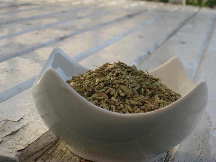 Fennel Seeds:   1- Aids in digestion.  2- Good source of minerals like copper, iron, calcium & magnesium.  3- Rich in potassium which helps your heart beat. 4- Concentrated source antioxidants, which help protect against degenerative diseases.    Always Remember: Moderation is the Key!    IMO this herb is underutilized, probably because of lack of knowledge on how it can be used. You will find it in some of the recipes used in Cooking with Ease available on iBookstore.