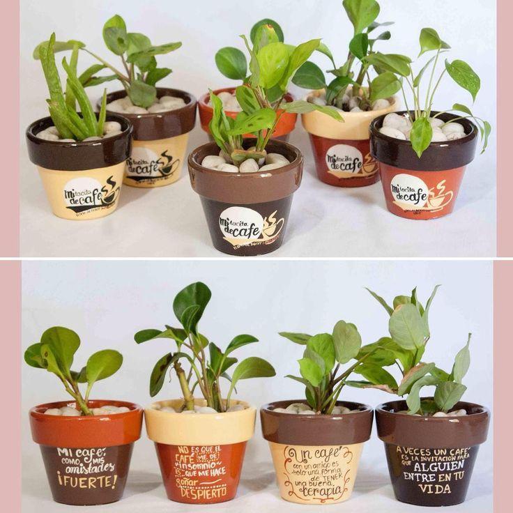 Frases @mi_tacita ☕️ @lachogaleanaphotographer . . #macetas  #ixtapazihuatanejo #pintadoamano #regalavida #mx #jardin #macetaspintadas #maartmacetas #succulove #handmadepottery #succupainting #pots #hechoamano #artemexicano #consumelocalmx #hechoconamor #loveplants #mexico #cactus #mexico #macetas #recuerdos #letlovegrow #cacticacti #cafe #frases #logo #cafeteria