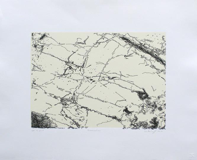 willem boshoff art, willemboshoff gallery, willem boshoff prints