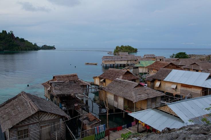 Indonesia - Sulawesi Togian - Gallerie - PeschieraMarco.com