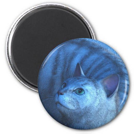 Gray Cat 4 Magnets