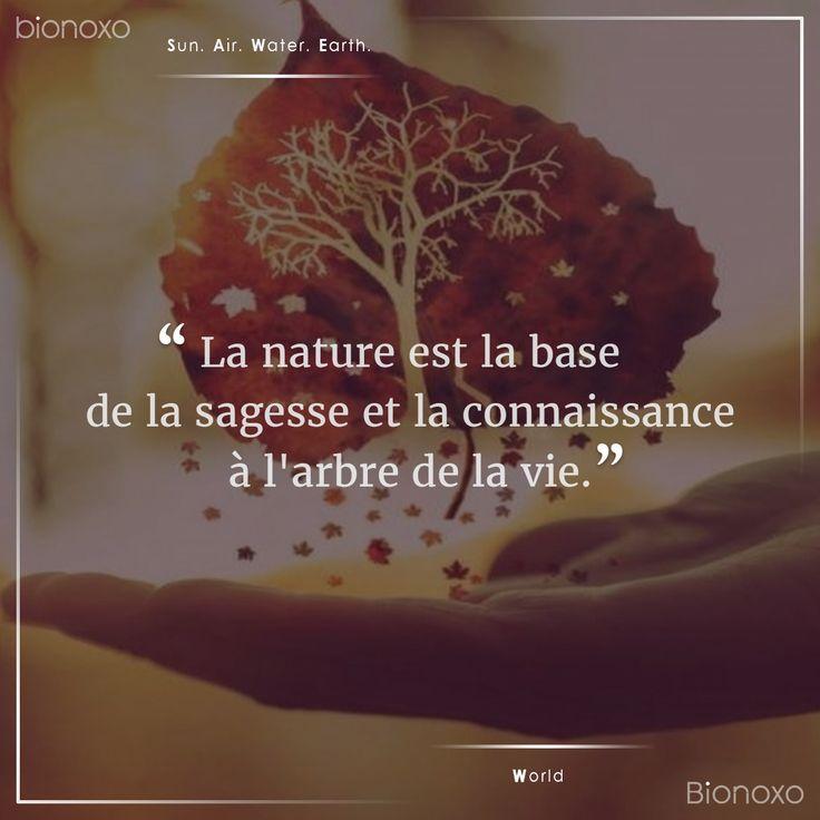 #EN The nature is the base of the wisdom and the knowledge to the tree of the life.    #ES La naturaleza es la base de la sabiduría y el conocimiento al árbol de la vida.   #FR La nature est la base de la sagesse et la connaissance à l'arbre de la vie. #Bionoxo #World