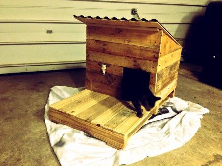 Outdoor cat shelter made from pallets.