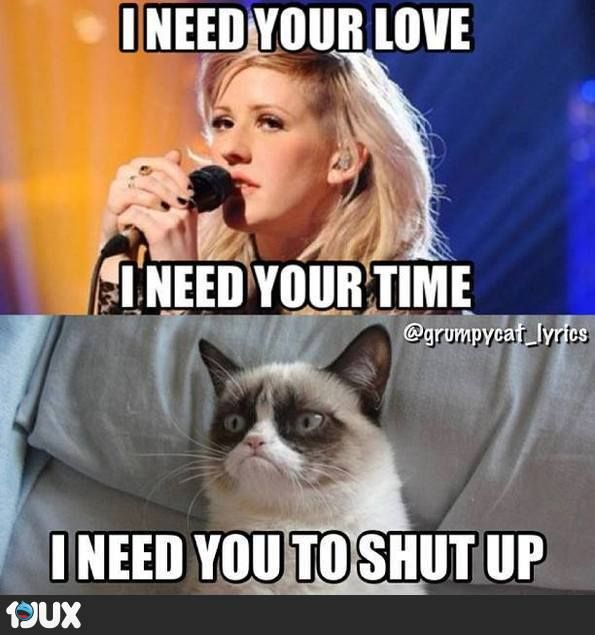 I need your Love... haha grumpy cat