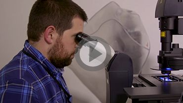 Watch this video about the link between the brain and immune system