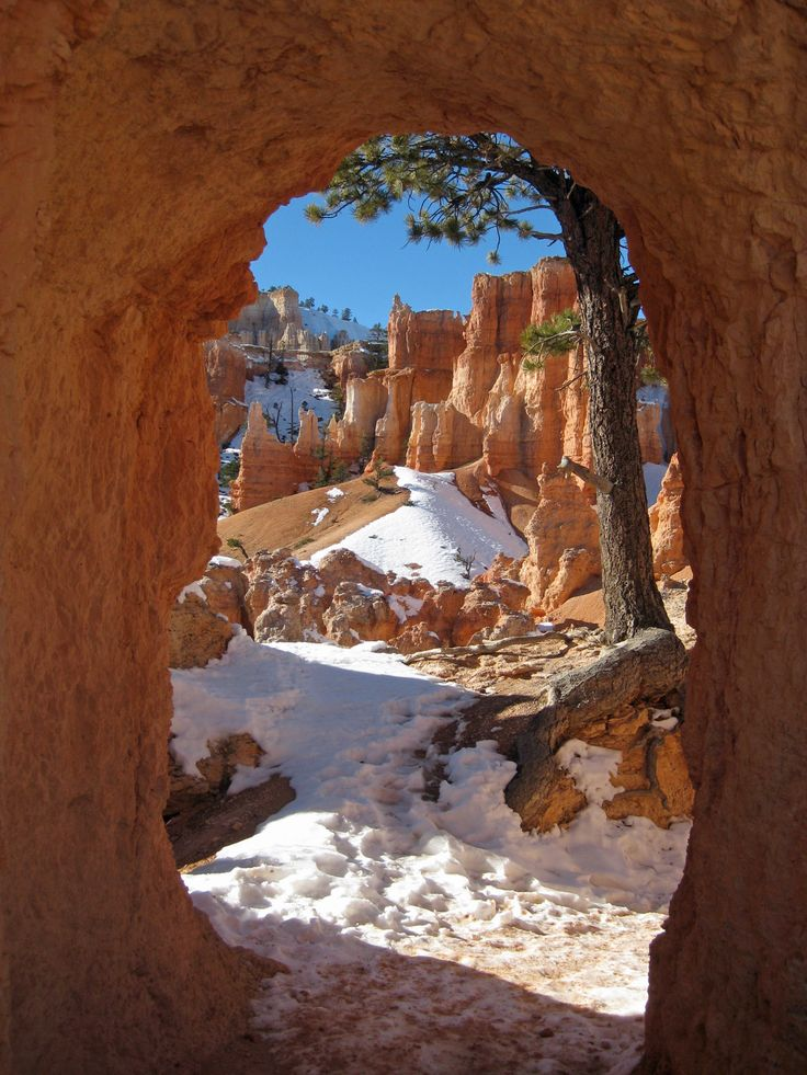 Bryce Canyon – a Winter Wonderland - Walkabout California
