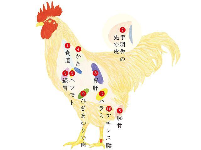 未体験の焼き鳥へ! 胃線、背肝、手羽先の先の皮,etc.…超希少部位が美味すぎる(2/2)[東京カレンダー]