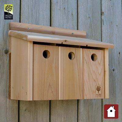 CedarPLUS Mussenflat met 3 vogelhuisjes op een rij.