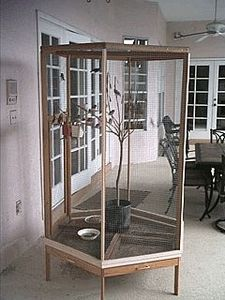 how to build a large bird cage. Would love this for back porch :)