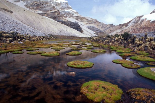 Cocuy National Park: Colombia