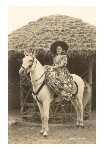 Mexican Horse.
