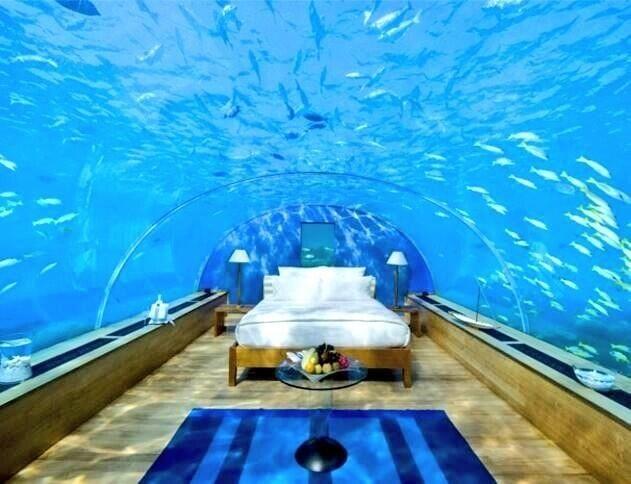 Dream room.